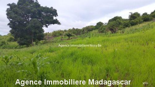 vente-terrain-vue-mer-nosybe-madagascar1.jpg