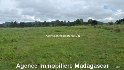 vente-terrain-vue-mer-nosybe-madagascar4.jpg
