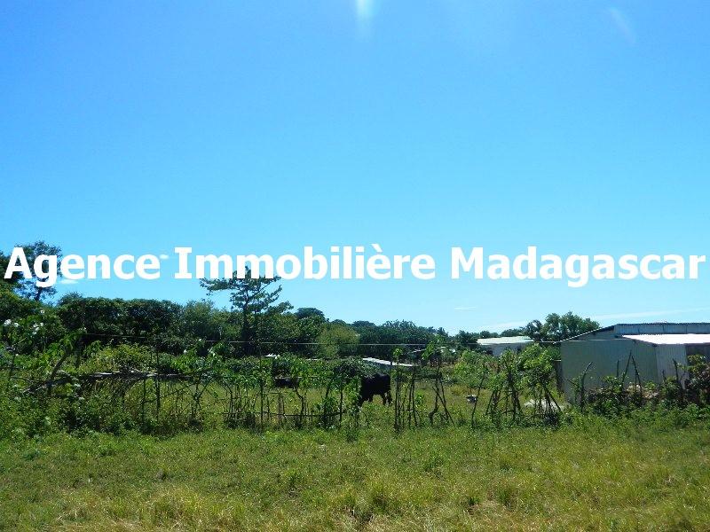 vente-terrain-croisement-y-diego-madagascar-2.JPG