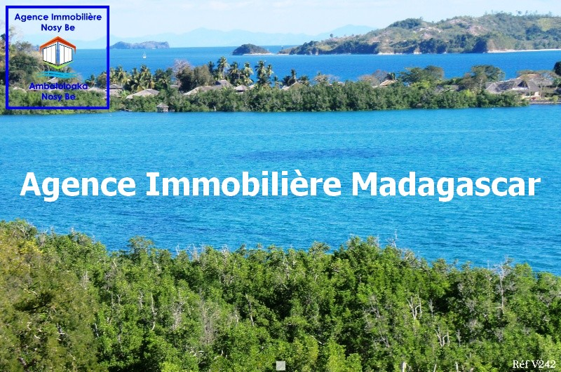 special-investisseur-vente-terrain-nosybe-4.jpg