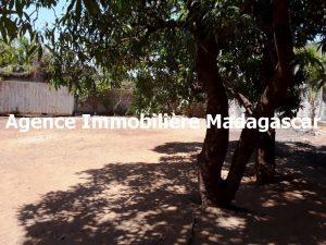mahajanga-centre-vente-terrain-1.jpg