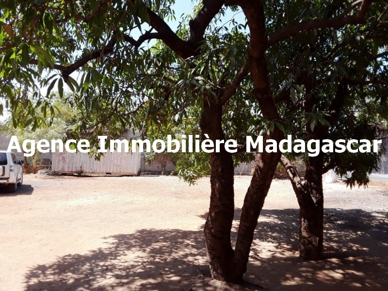 mahajanga-centre-vente-terrain-4.jpg