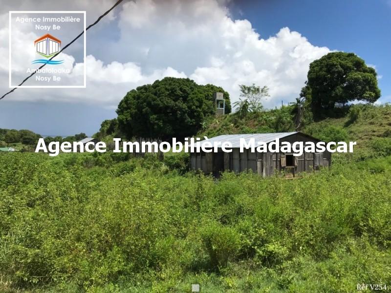 vente-terrain-amporaha-dzamanzar-nosybe-2.jpg