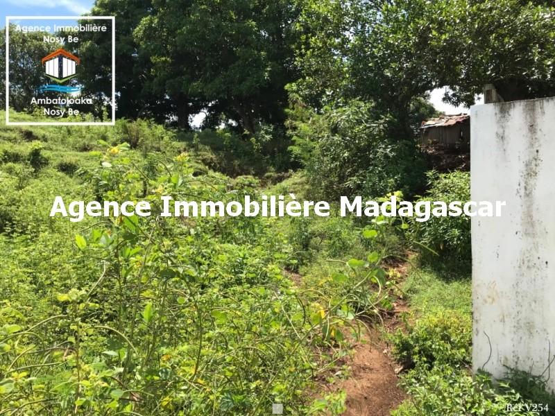 vente-terrain-amporaha-dzamanzar-nosybe-3.jpg