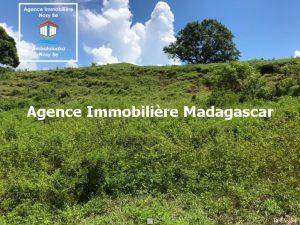 vente-terrain-amporaha-dzamanzar-nosybe-4.jpg