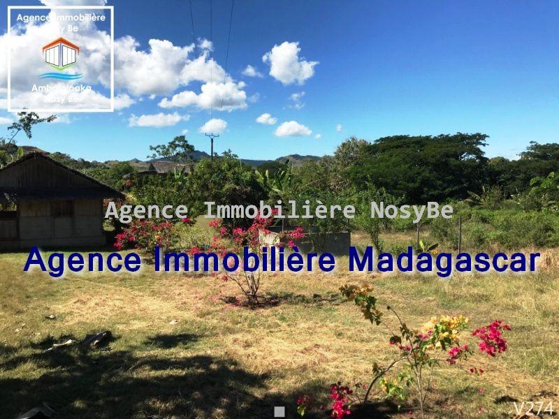 vente-terrain-orangea-nosybe-3.jpg