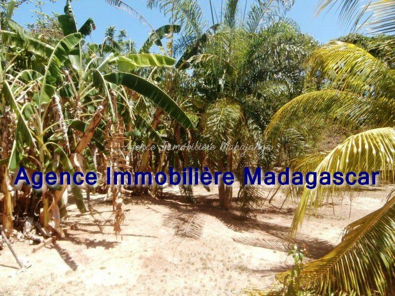 location-maison-mahajanga-grand-terrain-4.jpg