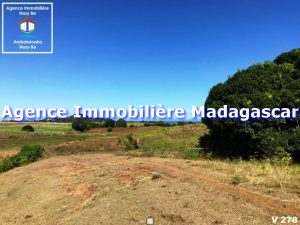 vente-terrain-belaza-nosybe-madagascar-1.jpg