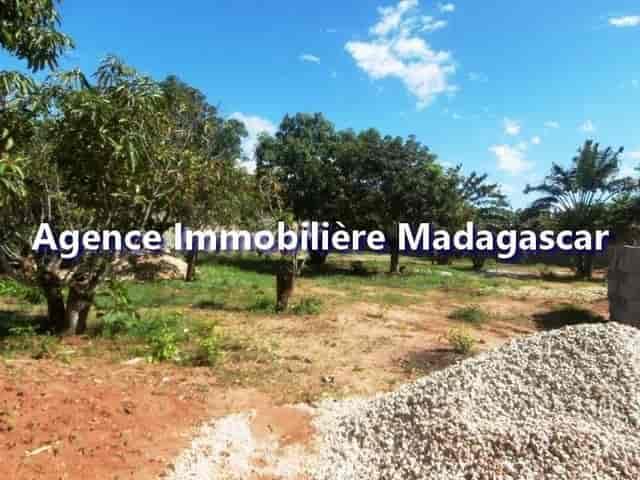 mahajanga-belobaka-vente-terrains-2-min.jpg