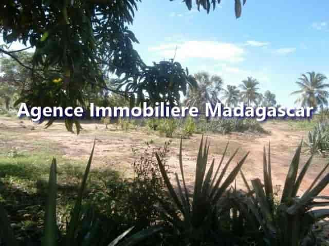 mahajanga-belobaka-vente-terrains-4-min.jpg