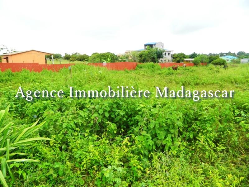 vente-terrain-quartier-scama-diego-madagascar-5.JPG