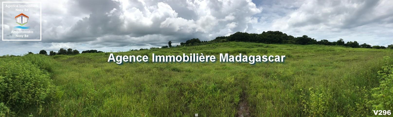 orangea-nosybe-vente-terrain-3.jpg