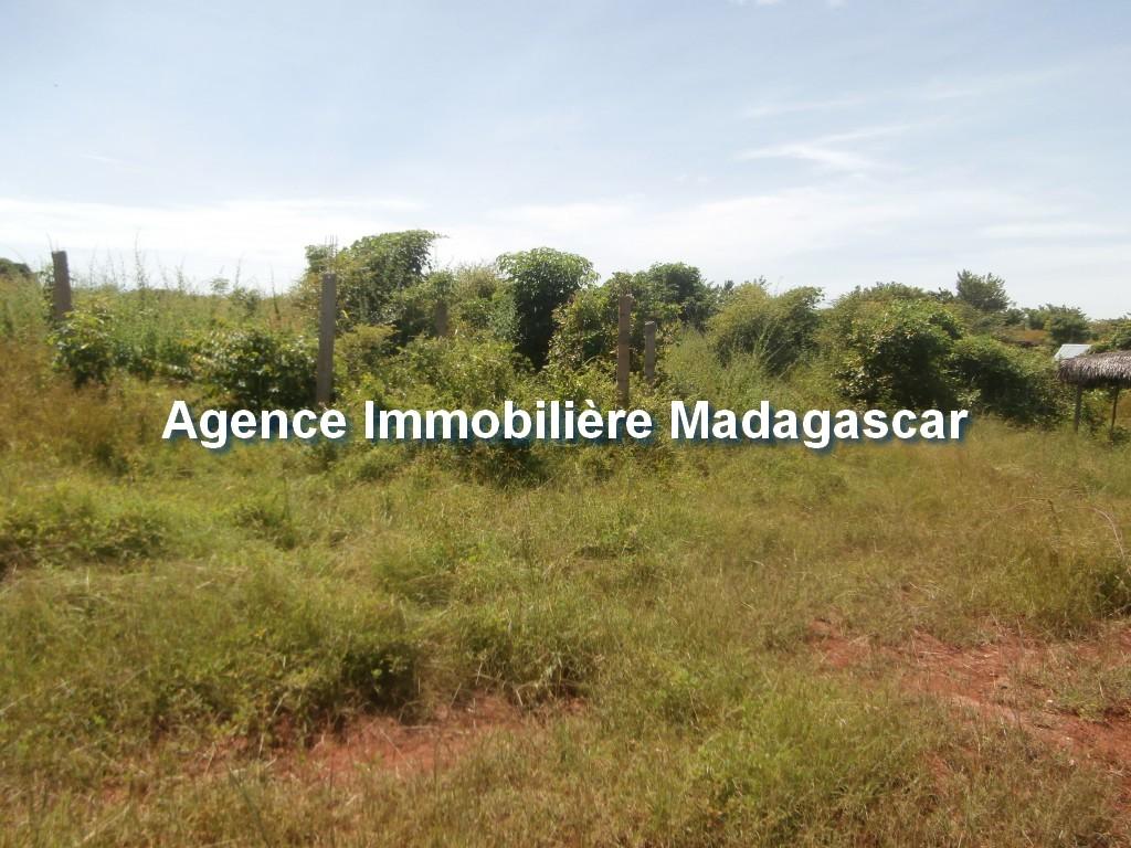vente-terrain-belobaka-mahajanga-1.jpg