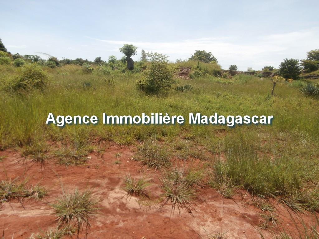 vente-terrain-belobaka-mahajanga-2.jpg