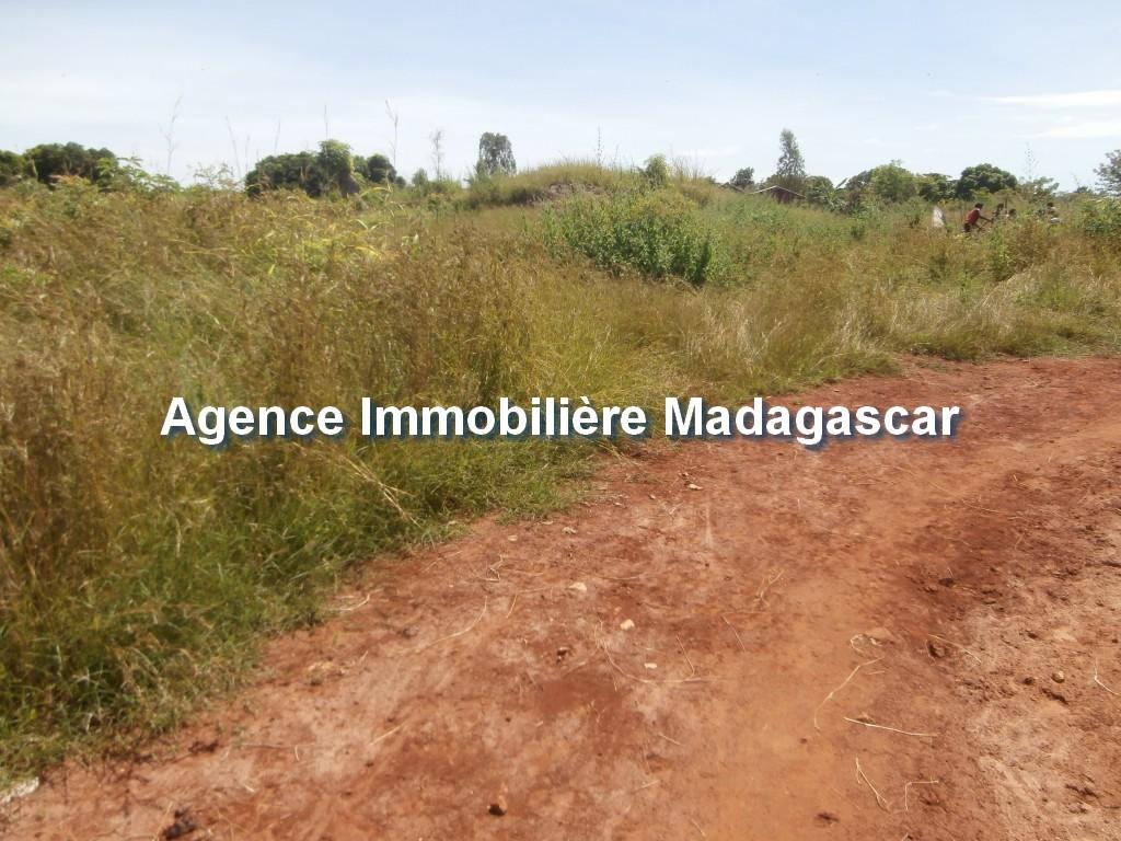 vente-terrain-belobaka-mahajanga-3.jpg