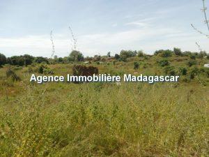 vente-terrain-belobaka-mahajanga-4.jpg