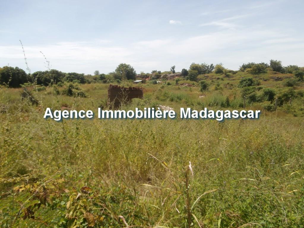 vente-terrain-belobaka-mahajanga-5.jpg
