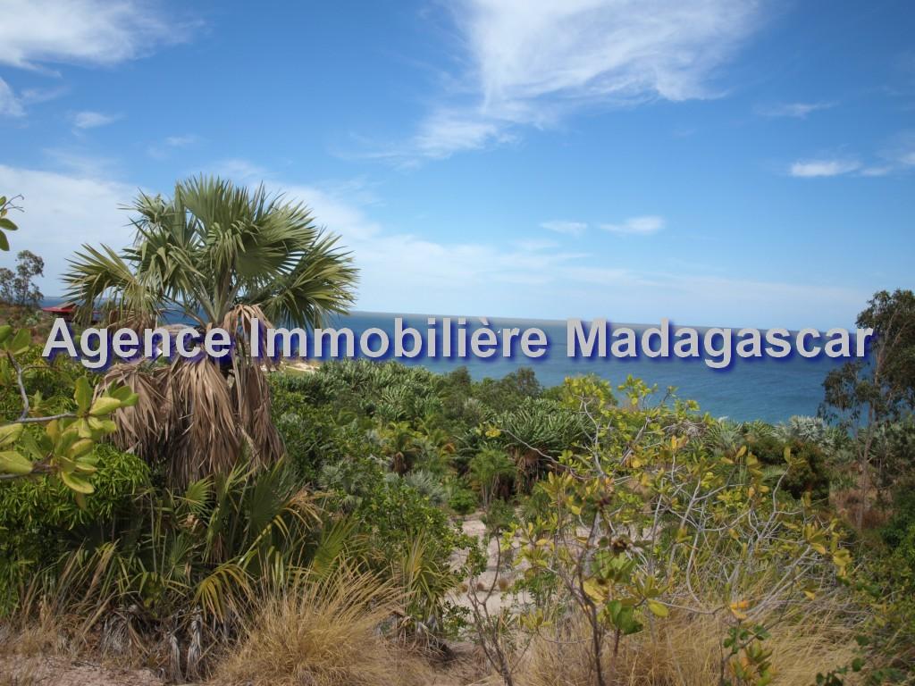 vente-magnifique-terrain-mahajanga-1.jpg