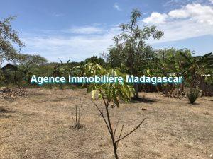 vente-terrain-quartier-residentiel-madirokely-2.jpg