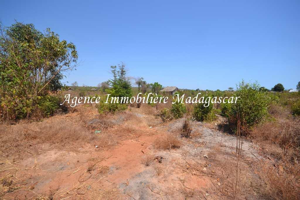 vente-terrain-antsanitia-mahajanga-1.jpg