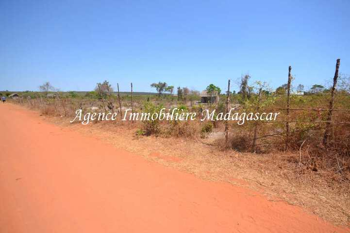 vente-terrain-antsanitia-mahajanga-2.jpg