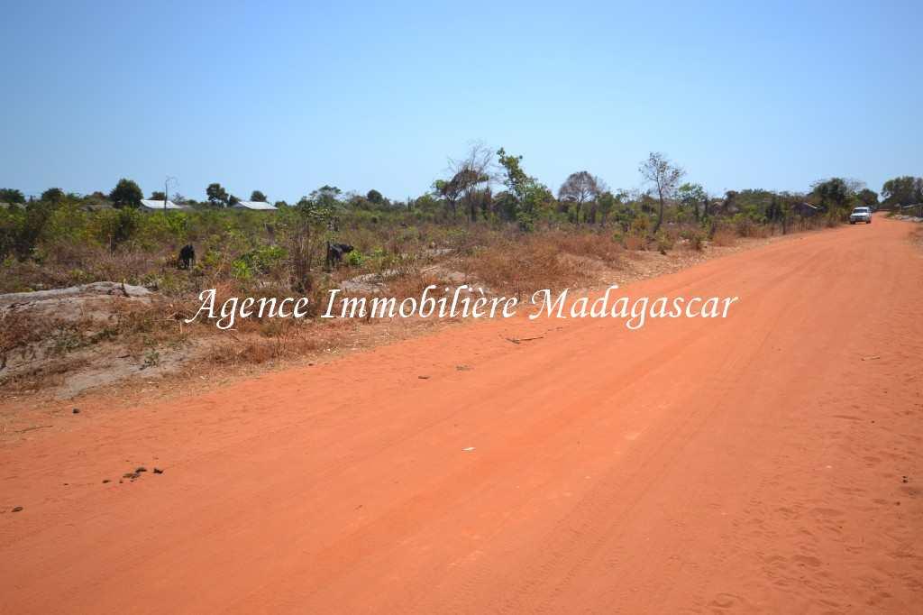 vente-terrain-antsanitia-mahajanga-3.jpg