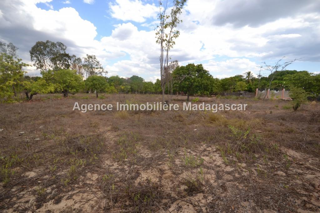 amborovy-vente-terrain-mahajanga-22.jpg