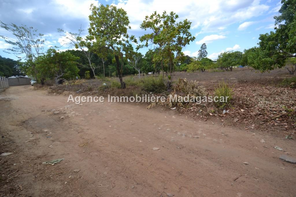 amborovy-vente-terrain-mahajanga-23.jpg