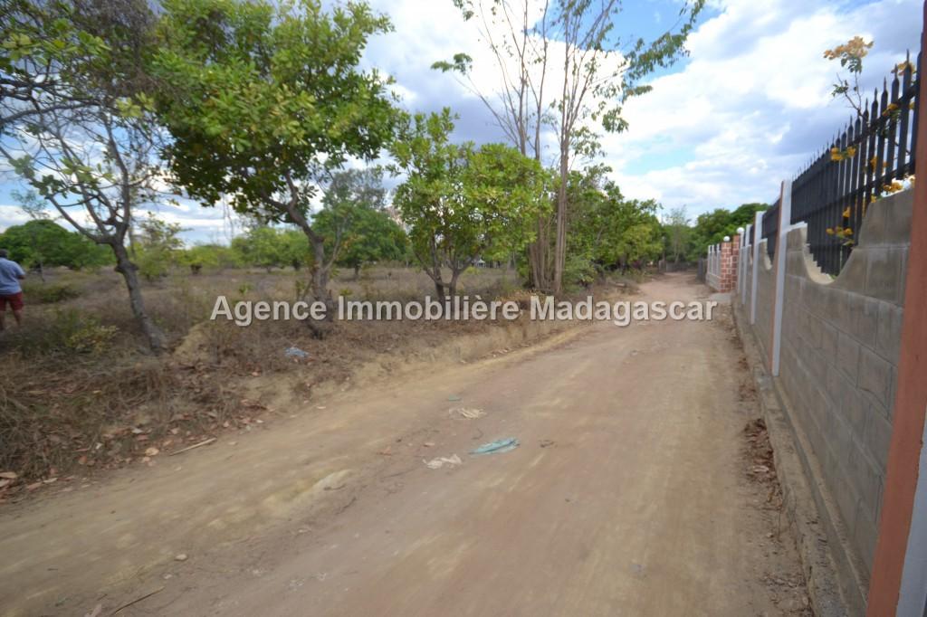 amborovy-vente-terrain-mahajanga-25.jpg