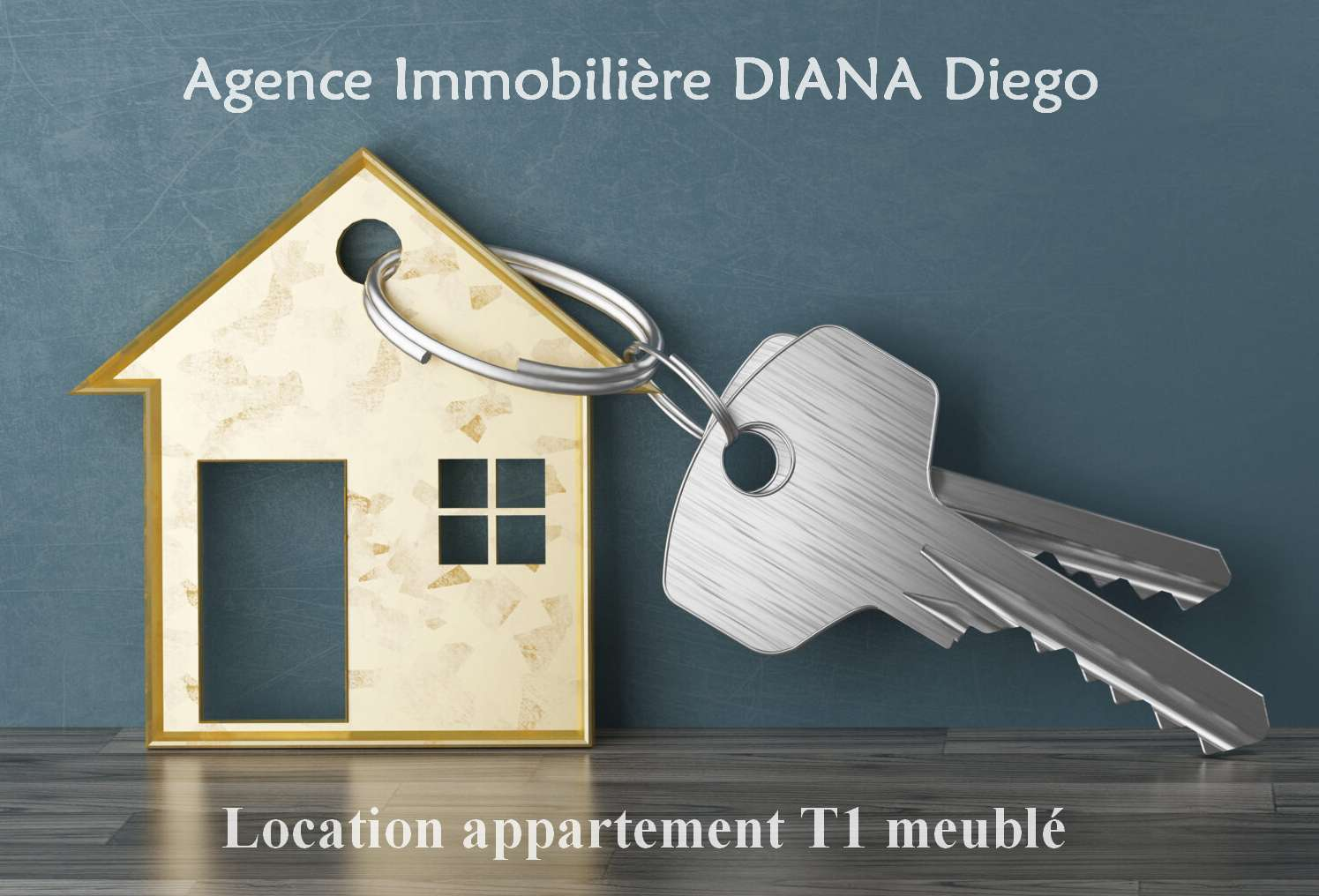 location-appartement-t1-meuble-centre-diego